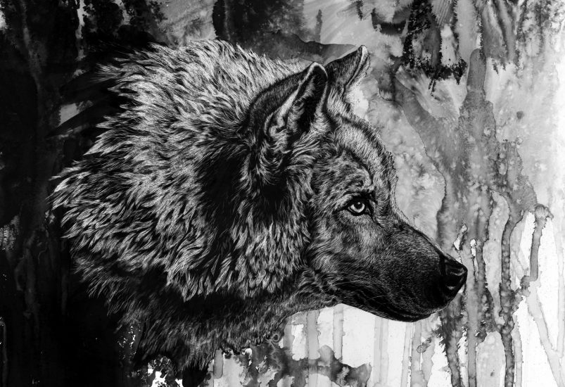 El lobo, de Hermann Hesse